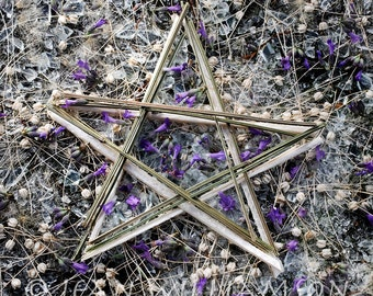 Photo Card, Star, Lavender, Greeting card, Square, blank inside for your message
