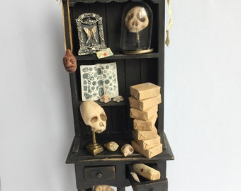 1/12th scale Curiosity Cabinet
