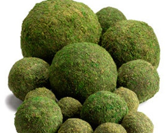 "Moss Balls  (10"") - Perfect For Rustic Country Weddings"