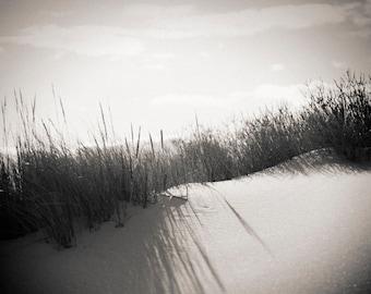 dunes, Avalon NJ 2016.