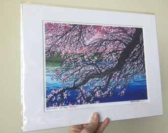 """11x14"""" Matted Giclee Print of Cherry Blossoms by Tracy Levesque"""