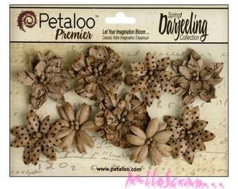 Set of 9 shabby Brown kraft paper scrapbooking embellishment Petaloo flowers *.