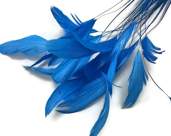 Eyelash Feathers, 1 Dozen - TURQUOISE Stripped Rooster Coque Rooster Tail Feathers: 344