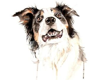 Pet portrait custom pet drawing Custom portrait dog commission watercolor painting artwork Border collie pet portrait artist pet loss gift
