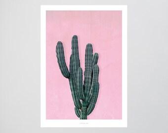 Kaktus No. 1 / Plant, Cactus, Tropical, Fine Art-Print, Wall-Art, Minimal Poster Art, Typography Art, Premium Poster, Kunstdruck Poster