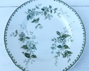 Vintage French  1900  Saint Amand Hamage Caiffa transferware  Floral pattern   plate