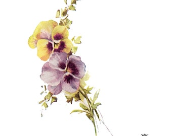 Pansies, Vintage pansies temporary tattoo, floral tattoo,  Wickedly Lovely Skin Art Temporary Tattoo (includes 2 Tattoos)