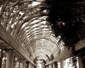 Digital Photography, Sepia Photography, Arbor Photo, Boston Photography, Foyer Wall Decor