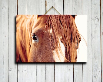"Horses Eyes - 16x24"" canvas print - Horse eyes decor - Horse decor - Horse photography - Horse art - Horse eyes art"
