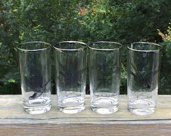 vintage drinking glasses, game birds pattern tumblers w/ platinum silver band trim