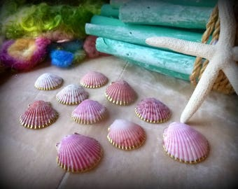 Seashells, Nature, Beach Decor, Drilled, Summer, Craft Supplies, Nautical, Ocean, Mermaid,  Gold