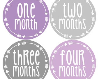 Baby Girl Month Stickers Monthly Baby Sticker Monthly Baby Stickers Baby Month Stickers Arrows Milestone Stickers Photo Stickers 1013