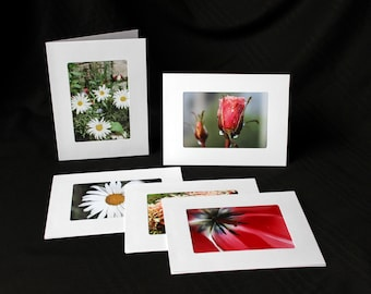 Six 5 x 7 Nature Photo Note Cards