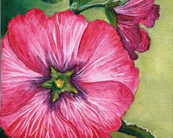 Pink Hollyhock - Small oil painting