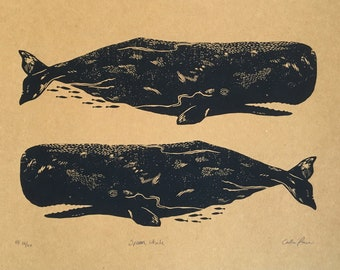 Sperm Whale Screen Print