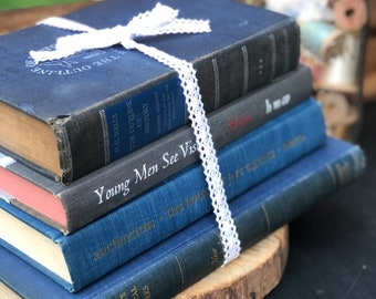 Vintage Book set of 4 (grays and blues)