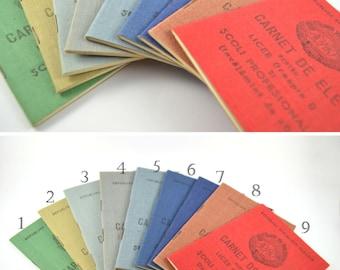 Vintage Unused Booklet for School Grades / Romanian Vintage Communist Class Record Book / Vintage Student Report Card / Examination Book