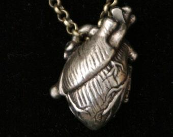 Human Heart Locket