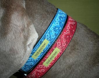 Kerchief Collar or Leash