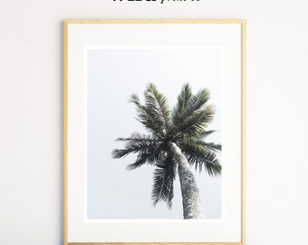 Palm Tree Print, Palm Sky, Tropical Wall Art, Beach Life, Beach Photography, Modern Minimal, Coastal Decor, Digital Download, Printable Art