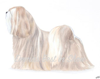 Lhasa Apso Dog - Archival Fine Art Print - AKC Best in Show Champion - Breed Standard - Non-Sporting Group - Original Art Print