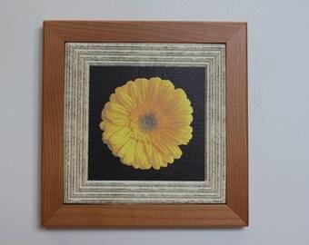 Alderwood giclee flower print