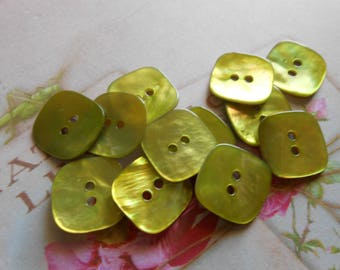 Buttons Natural Mother of Pearl Green 6 pcs