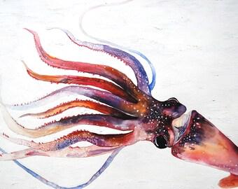 """A Squid, Giclee print 8""""x10"""""""