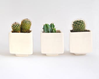 Set of Three Geometric Ceramic Planters, Cube Shaped and in Plain White Color. Ideal for Cactus, Succulents and Air Plants. Ready To Ship