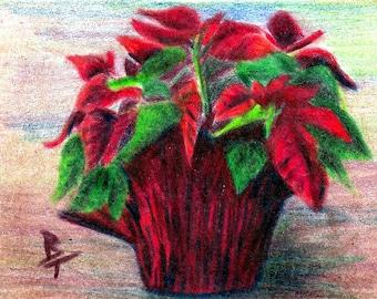 Poinsettia Original aceo 2.5x3.5 Inc Drawing
