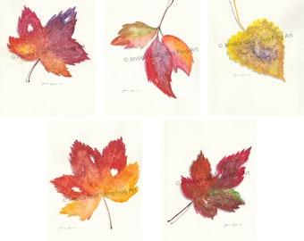 Leaf Series - Set of 5