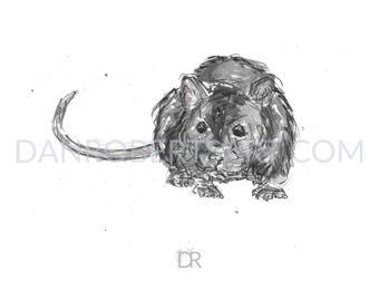 100 Animals, 100 Days: 66/100 The Rat DIGITAL FILE
