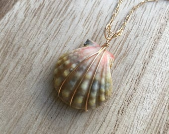 Lovely Moonrise Shell Pendant