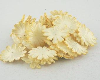 Lemon Mulberry Paper Mulberry Paper Blooms Pbc012