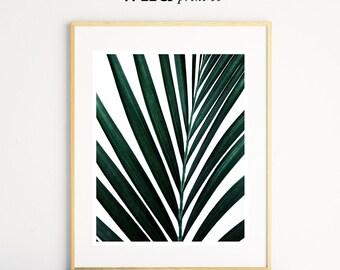 Tropical Leaf Wall Art Print, Green Leaf Photography, Tropical Wall Decor, Plant Prints, Modern Wall Art, Living Room Decor