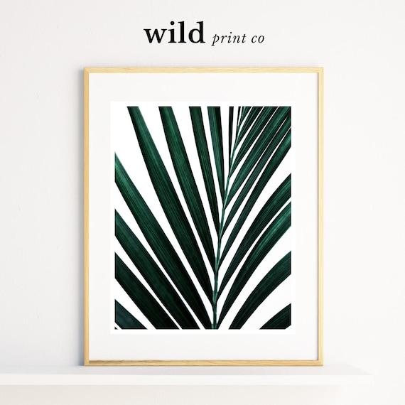 Tropical leaf wall art print green leaf photography tropical