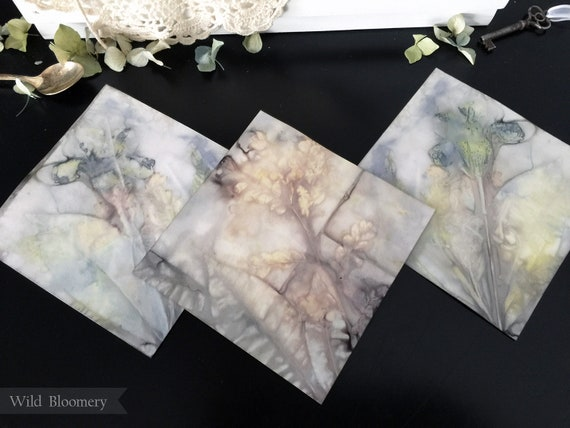 ECO Printed Paper Tiles Batch No. 0002 - 5 in Square, 110 lb Cardstock ECO Dyed Paper - Plant Dyed Boiled Paper Art Prints