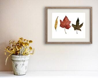 Indian Summer leaves art Print, autumn leaves watercolor, watercolor print, brown, rust, mustard, Still life art, fall leaves art, botanical