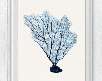 Blue Sea fan coral no.07 - Ocean print -  sea life print-Marine  sea life illustration A4 print SWC086