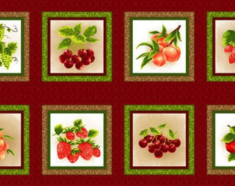 "New Fruit Fabric, Turkey Fabric: Fabri-Quilt Fresh Harvest Fruits Blocks Panel  100% cotton fabric by the PANEL 24""x42"" (FQ129)"