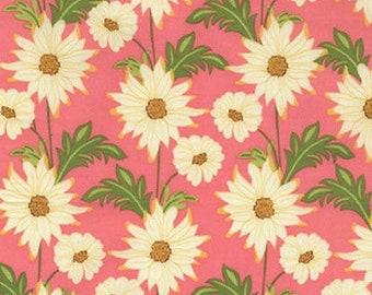 Michael Miller by Sandi Henderson Meadowsweet Daisy Path Blush Fabric - 1 yard