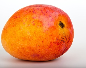 Mango Fragrance Oil - 1 pound
