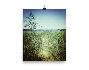 Island Beach Trail Matte Paper Wall Poster / Vintage Style Nature Photo / Pacific Northwest Nature Photo / San Juan Islands Landscape Photo