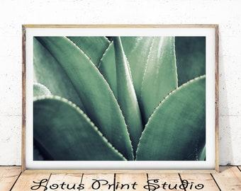 Green Leaves Print, Green Plant Photo,  Botanical Minimalist, Close Up Plant Art, Large Printable Poster, Digital Download, #403