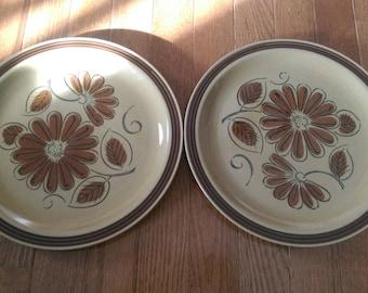 Set of 2 La Mesa Stoneware Daisy Dinner Plates