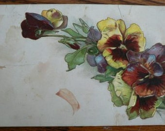 vintage POSTCARDS ... Floral SPRAY Purple PANSY stamped 1909  ...