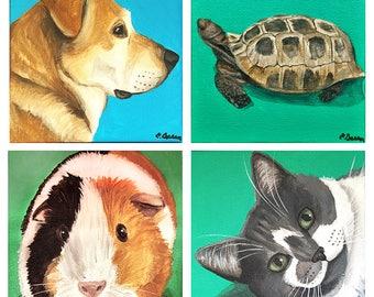 Custom 6 x6 Acrylic on Canvas Pet Portrait