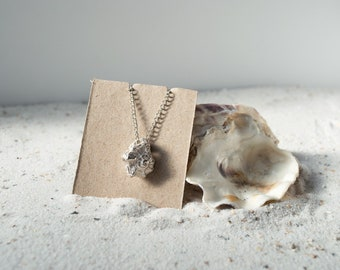 Shell Silver