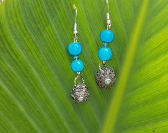 Silver Fishhook Earwires with Beached Shell with Turquoise Beads