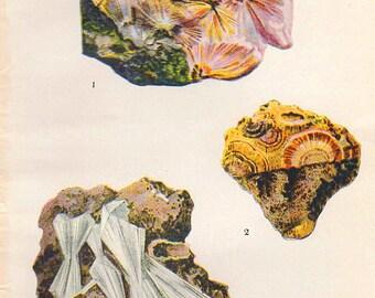 Vintage 1911 Minerals Print Antique Gems Precious Stones print gemstones print, bookplate art print, minerals wall crystal print wall art 37